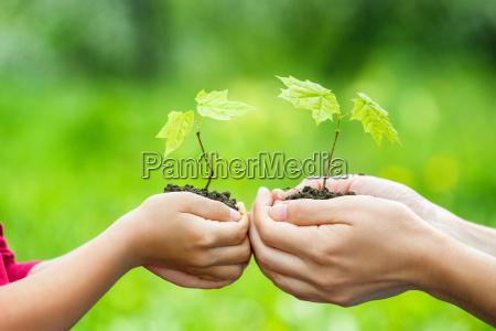 voksen og barn bedrift lille gron