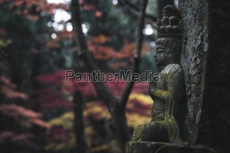 close up of buddha statue at