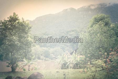 tage malaysia borneo jungle regnskov flod