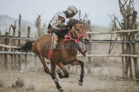 jockey ridning vaeddelobshest under hestevaeddelob