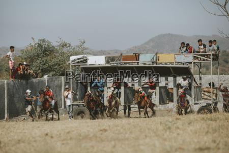 jockeyer konkurrerer i traditionelle hestevaeddelob