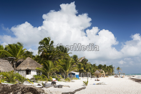 white sand beach with thatched huts