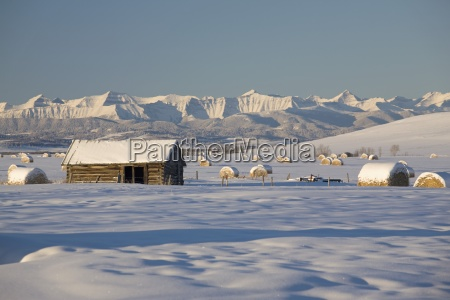 snow covered log cabin and hay