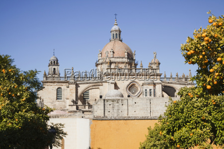 dome of a cathedral against a