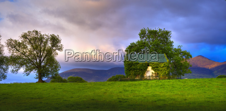 scenic view with vine covered barn