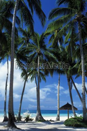philippines white sand beach blue sky