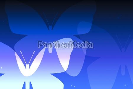 bla grafik dyr sommerfugl illustration grafiske