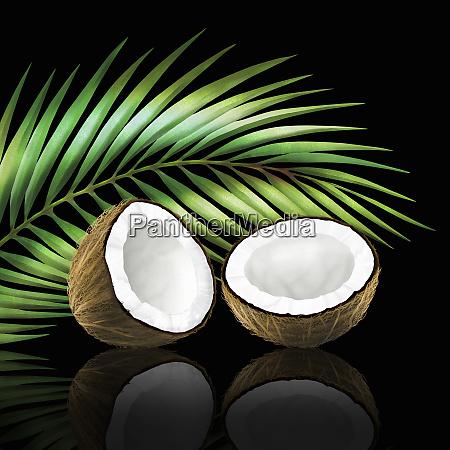 kokos i to halvdele med kokos