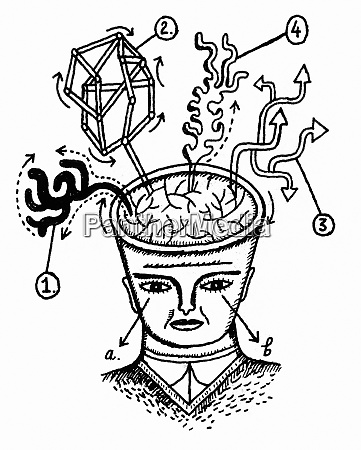 chemical models growing from mans brain