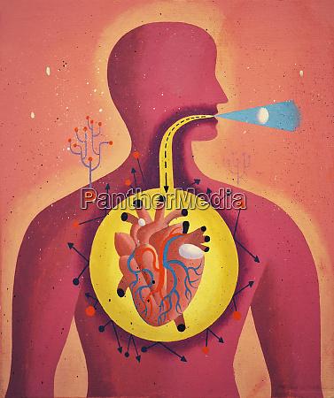 fordojelseskanalen direkte fra mund til hjerte