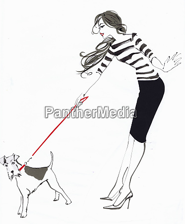 wire fox terrier straining at the