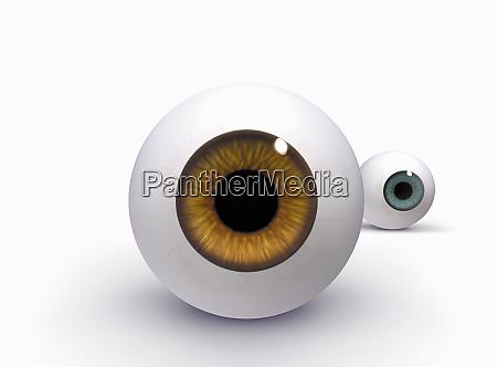 brown and blue glass eyeballs on