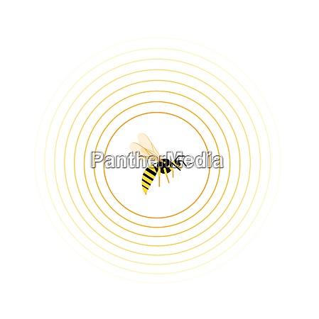 hvepse, indvendigt, cirkel, mønster - 26028157