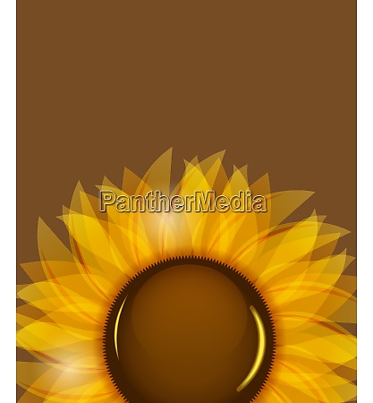 sunflowers vector illustration background vector illustration