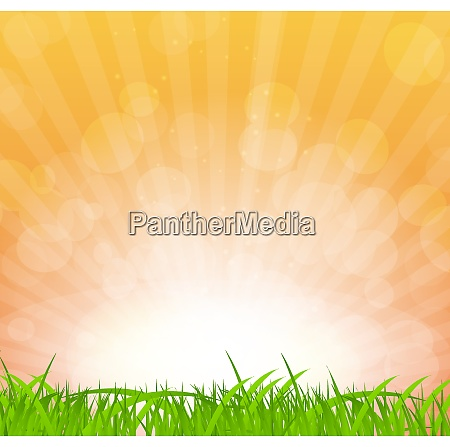 abstract natural background vector background