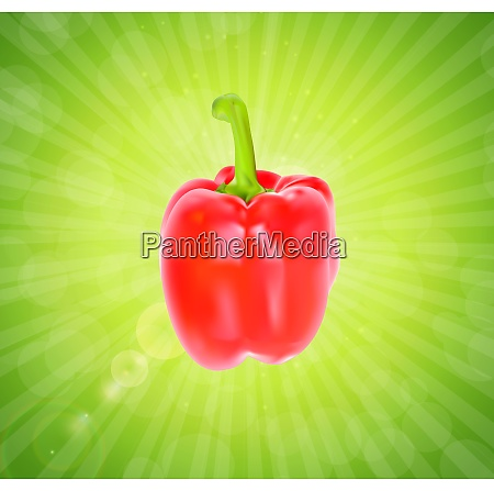 colored fresh sweet pepper vector isolated