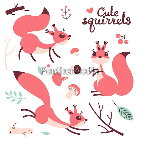 cartoon cute squirrel little funny squirrels