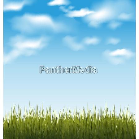 illustration foraret baggrund med gront graes