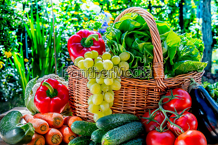 forskellige friske okologiske grontsager og frugter