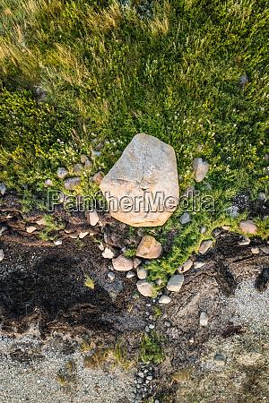 luftfoto af nordisk vegetation pa Oen