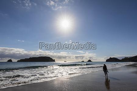 new zealand north island waikato sun