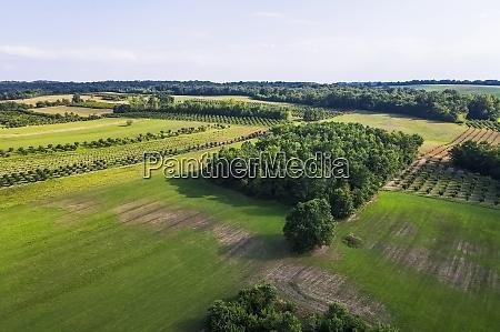 droneudsigt over gront landskab om sommeren