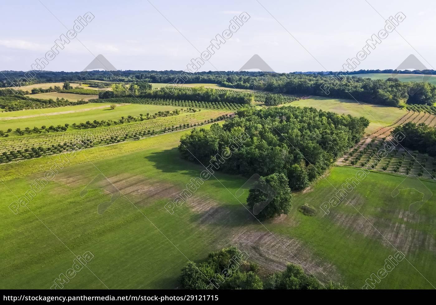 droneudsigt, over, grønt, landskab, om, sommeren - 29121715